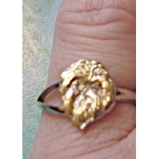 Affenpinscher Ring nr D114HDSM-RA