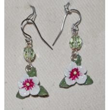Flower White Hibiscus Earrings no e17117 - Christmas Flower